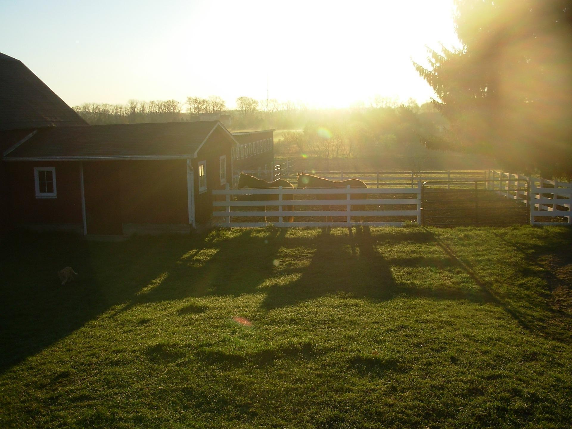 WI Horse Barns with Farmland for sale